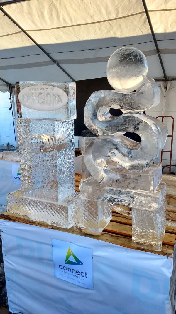 Rangiora Waimakariri North Canterbury Event Winter Festival Fest 2017 Ice Sculpture Sculptures