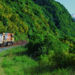 A new hope: Christchurch to Picton line reopens