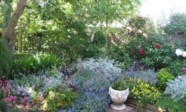 Gardens of Fernside' Garden Tour – Nov 25 2018